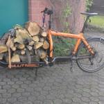 firewood, large